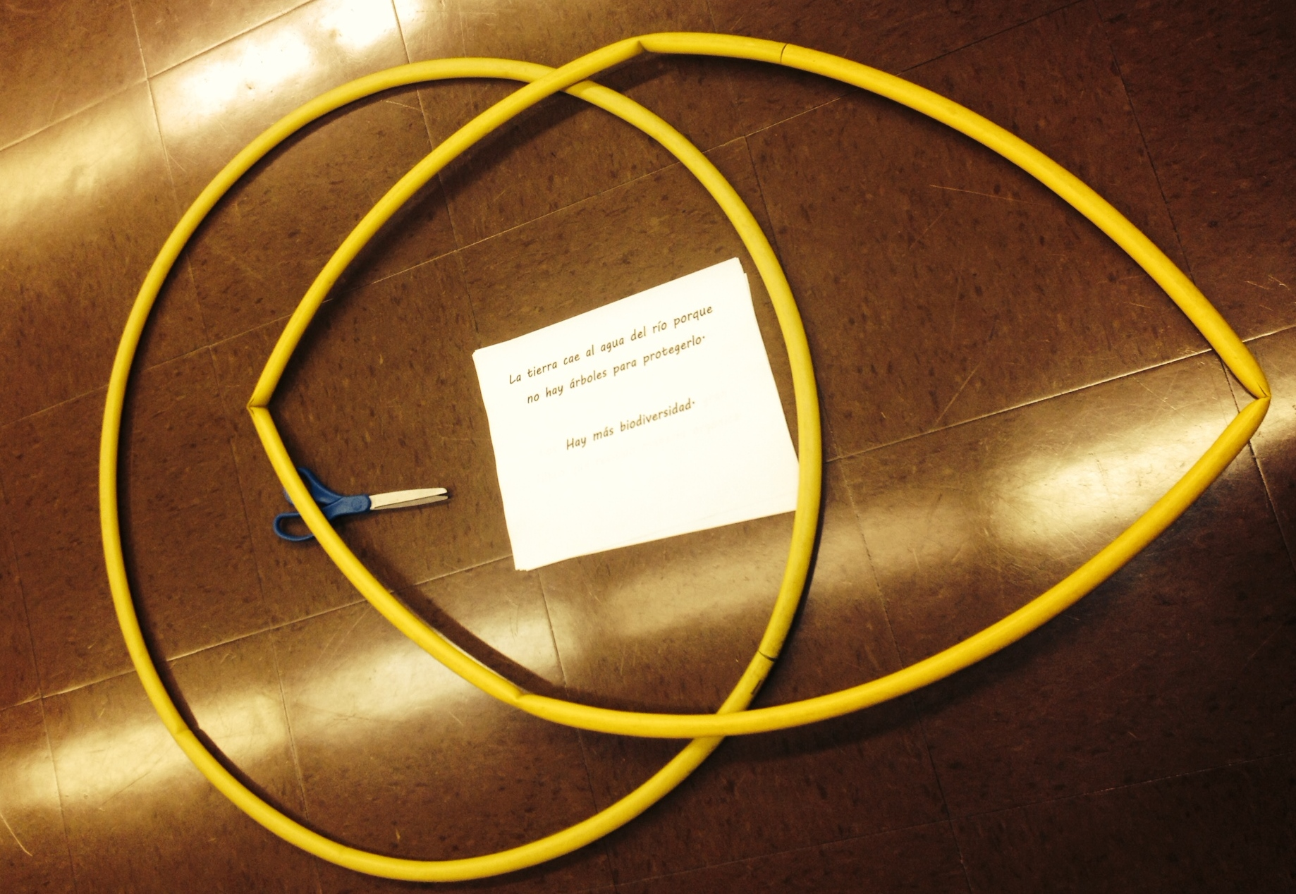 Hula Hoop Venn Diagrams